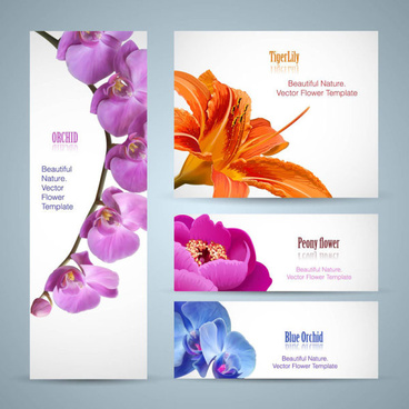 vivid with flower banner design vector