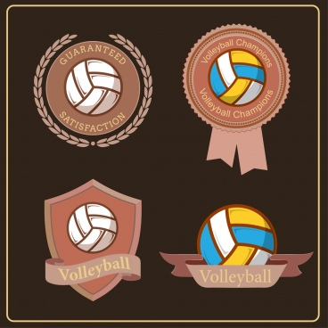 volleyball logotypes brown decor classical design