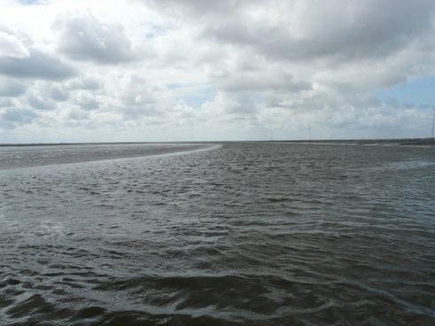 wadden sea sea priel