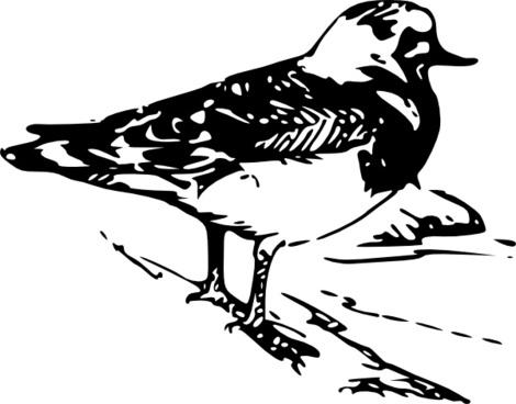 Walking Bird Animal clip art