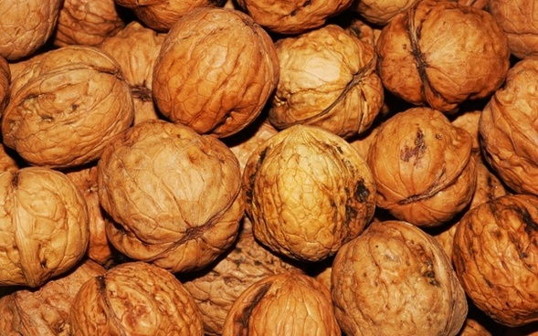 walnut food before eat