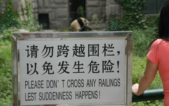 warning panda