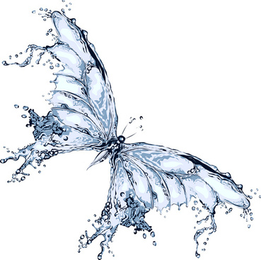 water butterfly vector design