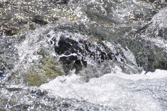 water drip bach