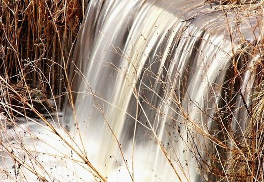 water running dry grass