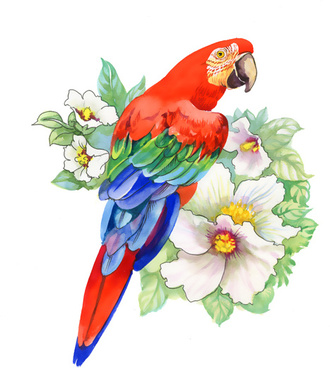 watercolor drawn birds with flowers vector design