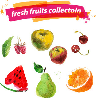 watercolor fresh fruits set vector