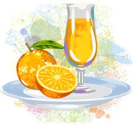 watercolor orange with juice vector