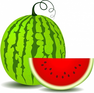 watermelon free vector download 133 free vector for commercial use rh all free download com watermelon vector download watermelon vector images