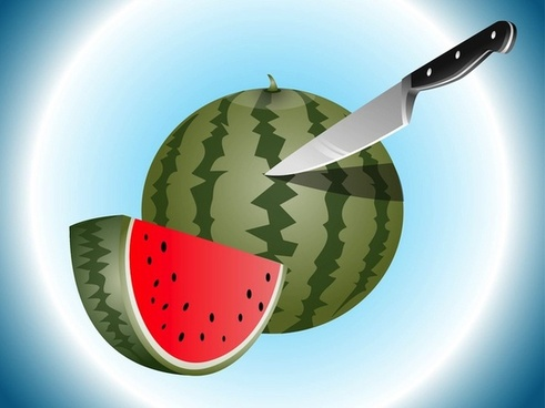 watermelon slices food vector art