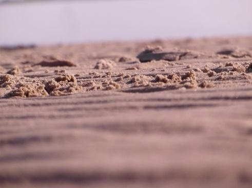 watts beach elbe