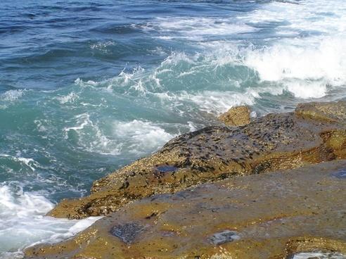wave rock surf