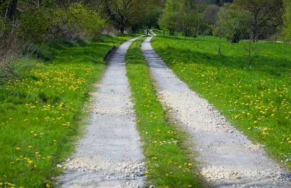 way through landscape