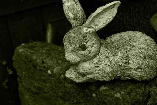 weathered bunny