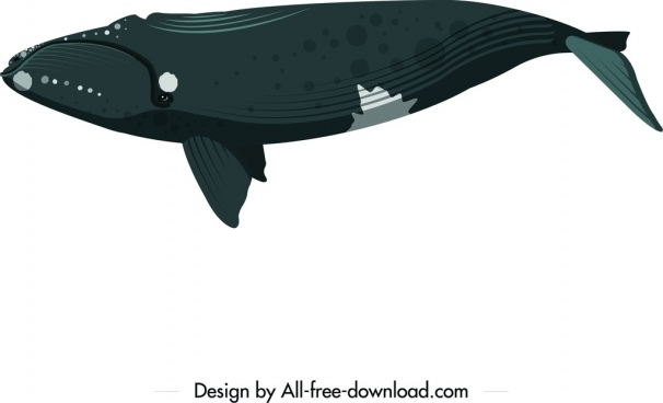 whale icon upside down swimming sketch