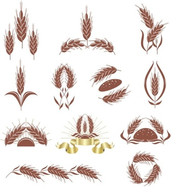 wheat 02 vector