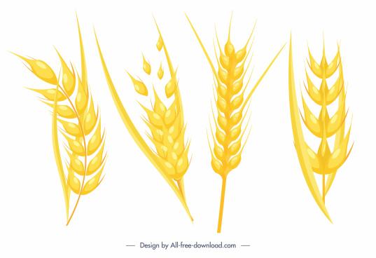 wheat flower icons bright golden dynamic design