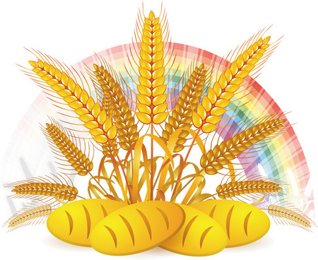 wheat with bread vector