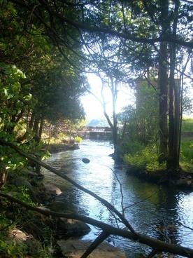 where brook meets lake