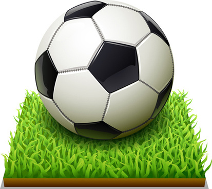 white black soccer and grass vector