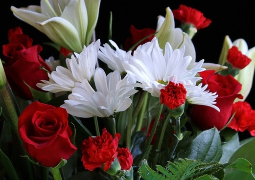 white daisys red roses red carnations
