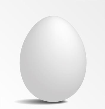 white eggs design vector