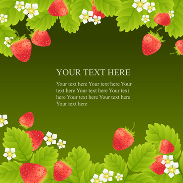 white flower and strawberries vector background