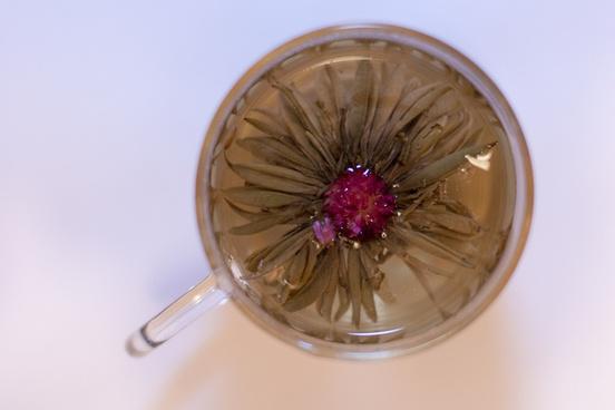 white flower lychee ball white tea