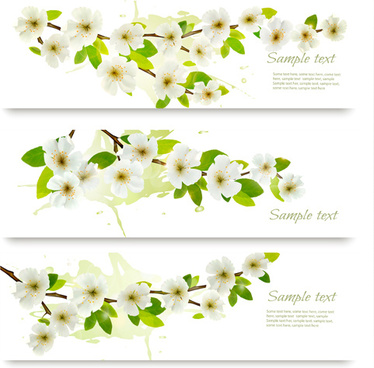 white flower spring banners vectors