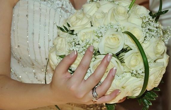 white flower white flower