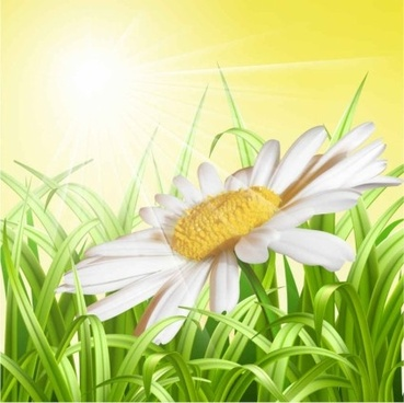 white flower with grass art background vector