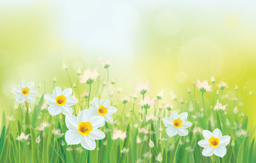 white flowers spring beautiful background vector