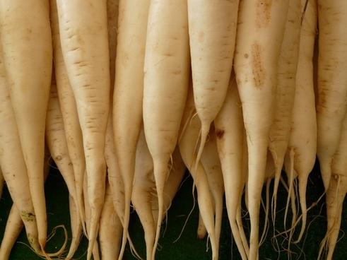white radish radish vegetables