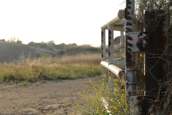 white rusted gate in wilderness