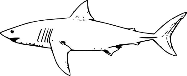White Shark clip art