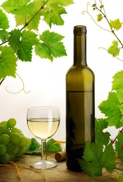 white wines of highdefinition picture 1