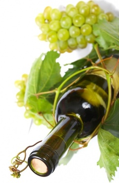 white wines of highdefinition picture 4