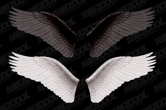 white wings and black wings layered 2