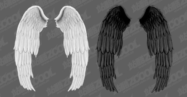 white wings and black wings psd layered