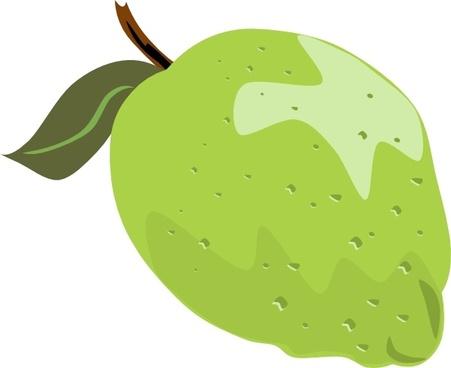 Whole Lime clip art