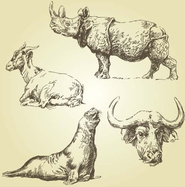 wild animals hand drawing vectors set