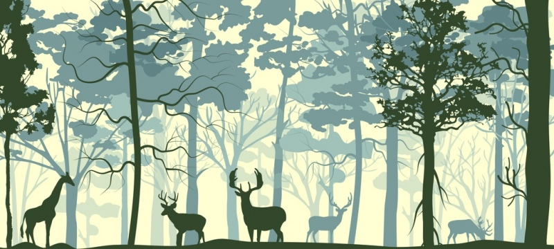 wild nature drawing forest animals icons silhouette design