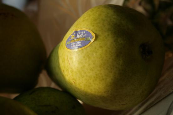 williams bartlett pear