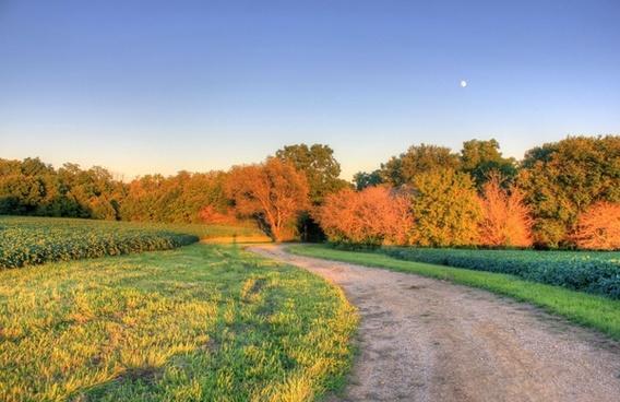 winding path at charles mound illinois