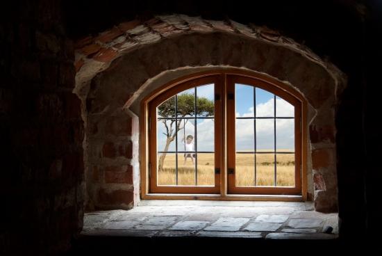grassland scene outside of brick houses window