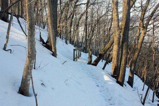windy trail down the mountain at frontenac state park minnesota