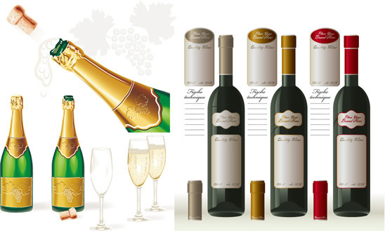wine champagne vector