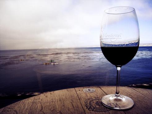 wine horizon
