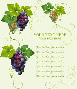 wine background grapes icons colorful design