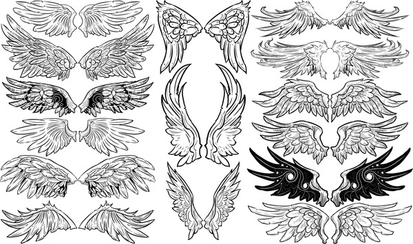 wings icons templates classical black white symmetric sketch